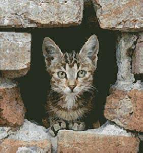 cross stitch pattern Kitten in Wall