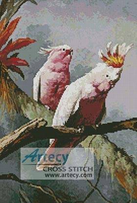 cross stitch pattern Leadbeater Cockatoos
