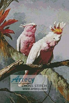 cross stitch pattern Leadbeater Cockatoos