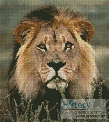 cross stitch pattern Lion 3