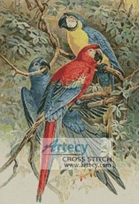 cross stitch pattern Macaws