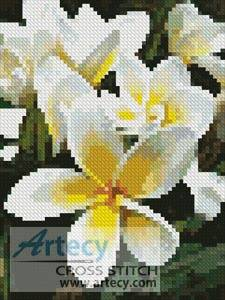 cross stitch pattern Mini Frangipani