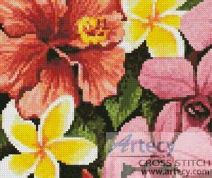 cross stitch pattern Mini Tropical Flowers of Oz