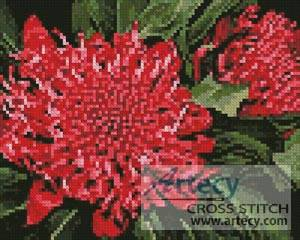 cross stitch pattern Mini Waratah