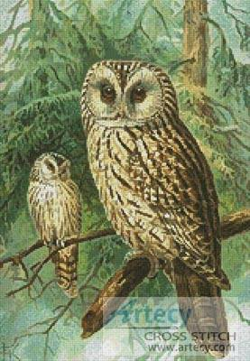 cross stitch pattern Ural Owl