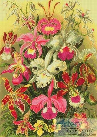 cross stitch pattern Orchids