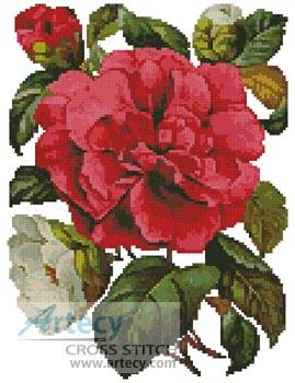 cross stitch pattern Pink Camellia