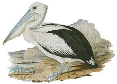 cross stitch pattern Pelican