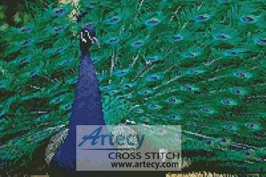 cross stitch pattern Peacock Photo