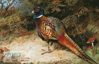 cross stitch pattern Pheasants