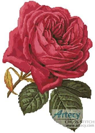 cross stitch pattern Pink Rose
