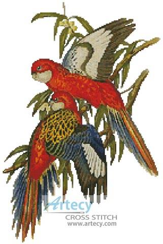 cross stitch pattern Parakeets