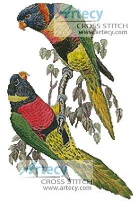 cross stitch pattern Red Collared and Fosters Lorikeets