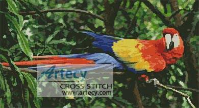 cross stitch pattern Scarlet Macaw 2