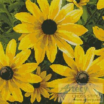 cross stitch pattern Black-eyed Susan