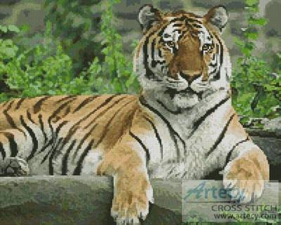 cross stitch pattern Tiger