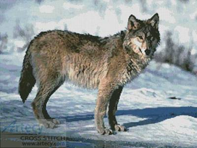 cross stitch pattern Wolf 4