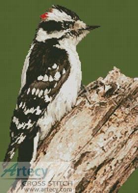 cross stitch pattern Woodpecker
