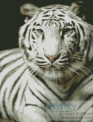cross stitch pattern White Tiger