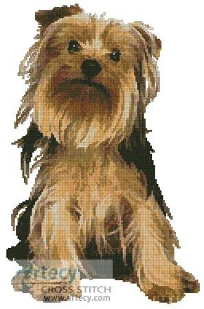 cross stitch pattern Yorkshire Terrier
