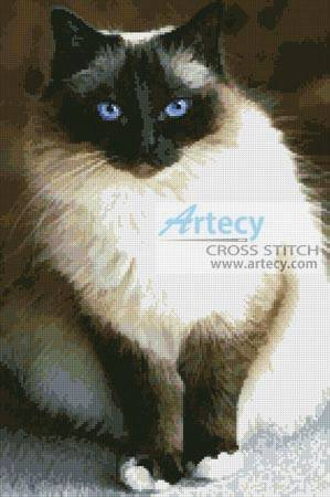 cross stitch pattern Birman Cat