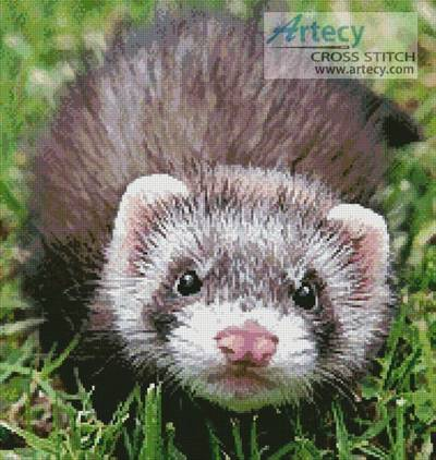 cross stitch pattern Ferret