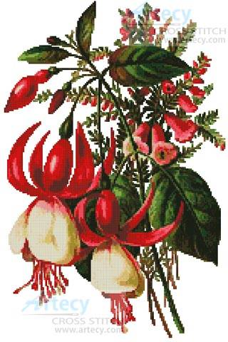 cross stitch pattern Fuschia 3