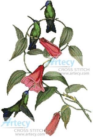 cross stitch pattern Green and Blue Sapphire Hummingbirds