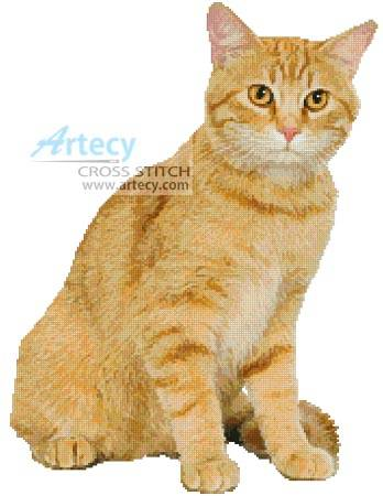cross stitch pattern Ginger Cat
