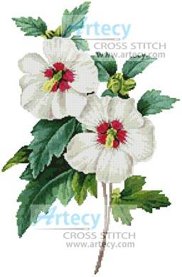 cross stitch pattern Hibiscus Syriacus