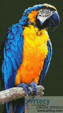 cross stitch pattern Macaw