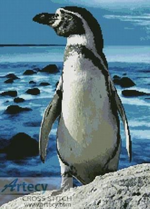cross stitch pattern Penguin Photo