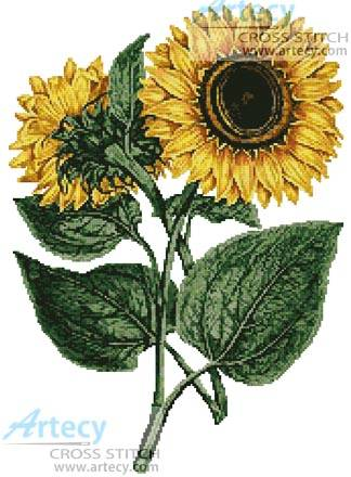 cross stitch pattern Sunflowers