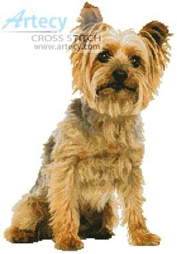 cross stitch pattern Silky Terrier
