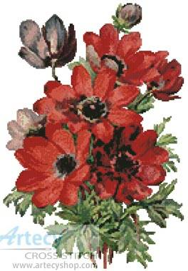 cross stitch pattern Anemones