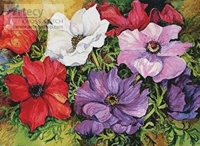 cross stitch pattern Colourful Anemones