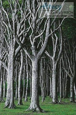 cross stitch pattern Beech Trees
