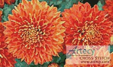 cross stitch pattern Chrysanthemums