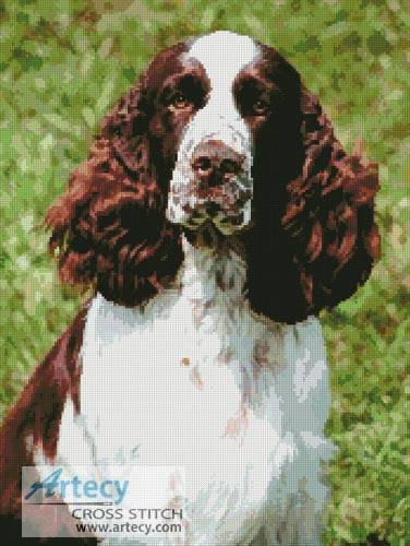 cross stitch pattern English Springer Spaniel