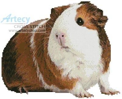 cross stitch pattern Guinea Pig