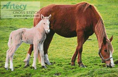 cross stitch pattern Horse with Foal