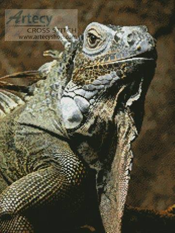 cross stitch pattern Iguana