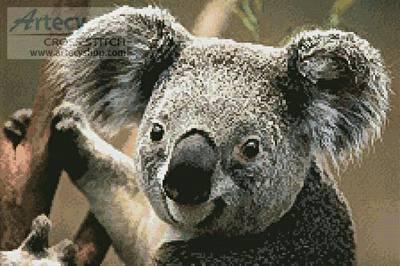 cross stitch pattern Koala Portrait