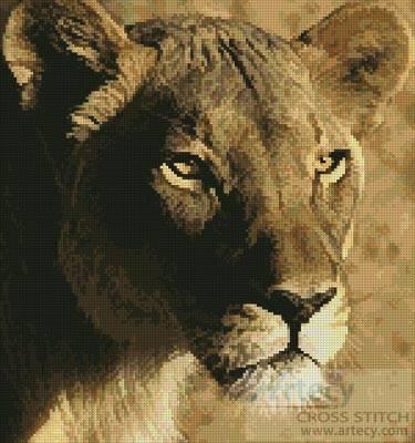 cross stitch pattern Lioness Close Up