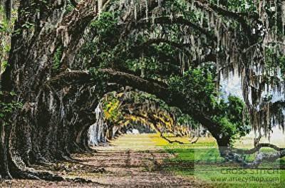 cross stitch pattern Oak Tree Path