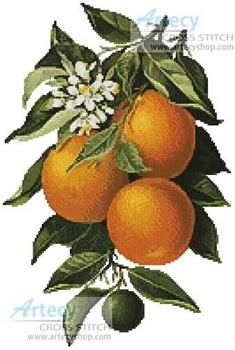 cross stitch pattern Oranges