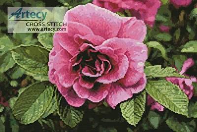 cross stitch pattern Pink Rose Photo