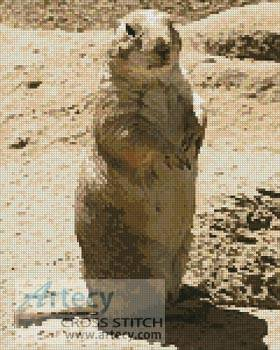 cross stitch pattern Prairie Dog