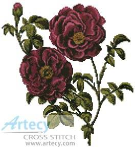 cross stitch pattern Pink Roses
