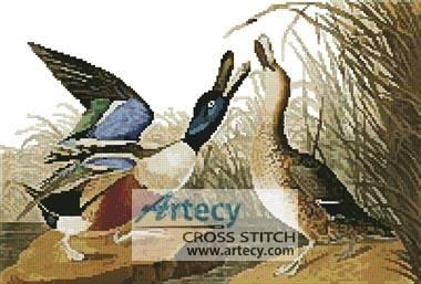 cross stitch pattern Shoveller Duck